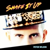 Cover of the album Shake It Up