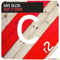 Couverture du titre Shut It Down - Single