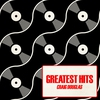Cover of the album Greatest Hits (Re-Recorded Versions)