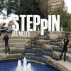 Cover of the track Steppin' (feat. Rick Parma)