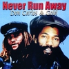 Cover of the album Never Run Away