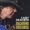 Couverture de l'album Vagabond Dreamer