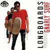 Couverture de l'album Gnarly Surf