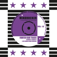 Cover of the track Mindrocker - A US-Punk Anthology, Vol. 12 (Remastered)