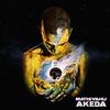Couverture de l'album Akeda