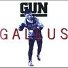 Cover of the album Gallus