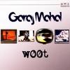 Cover of the album Woot (feat. Fareed Haque, Kai Eckhardt, Alan Hertz & Eric Levy)