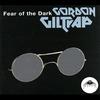 Couverture de l'album Fear of the Dark (2013 Remaster)