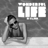 Couverture du titre Wonderful Life