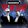 Couverture de l'album Yes We Bang!