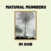 Cover of the album Natural Numbers in Dub