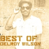 Couverture de l'album Best Of Delroy Wilson
