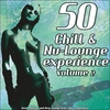 Cover of the album 50 Chill & Nu-Lounge Experience, Vol. 2 (Great Chillout and Deep Lounge Tunes Hits Compilation)