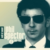 Couverture de l'album Wall of Sound: The Very Best of Phil Spector 1961–1966