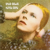 Cover of the track Hunky Dory