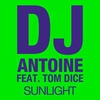 Cover of the track Sunlight