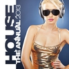 Cover of the album House the Annual 2013