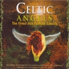 Cover of the album Celtic Angels