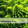 Cover of the album All Things Passing