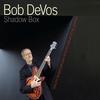 Cover of the track The Wizard (feat. Bob Devos, Ralph Bowen, Dan Kostelnik & Steve Johns)