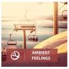 Couverture de l'album Ambient Feelings