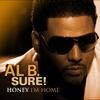Cover of the album Honey I'm Home