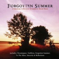 Cover of the track Forgotten Summer (Pure Ambient)