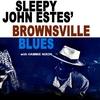 Couverture de l'album Brownsville Blues