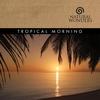 Couverture de l'album Tropical Morning