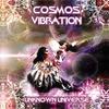 Couverture de l'album Cosmos Vibration - Unknown Universe