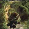 Cover of the album Delta Dawn