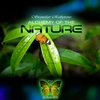 Cover of the album Alchemy of the Nature