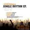 Cover of the album Jungle Rhythm EP