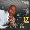Couverture de l'album Best of Gadji Celi (17 tubes)
