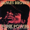 Couverture de l'album Funk Power 1970: A Brand New Thang