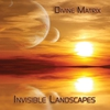 Cover of the album Invisible Landscapes