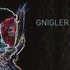 Cover of the album Gnigler
