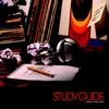 Couverture de l'album Study Guide