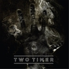 Cover of the album Two Timer