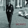 Cover of the album Incanto