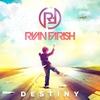Couverture de l'album Destiny