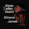 Cover of the album Blues After Hours