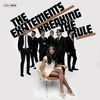 Couverture de l'album Breaking the Rule
