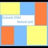 Couverture de l'album Neked szól - EP