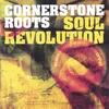 Couverture de l'album Soul Revolution