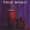 Couverture de l'album True Spirit