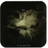 Couverture de l'album The Nest and The Skull
