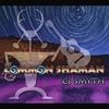 Couverture de l'album Common Shaman