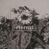 Couverture de l'album Eternal