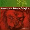 Cover of the album Nice & Ruff 5